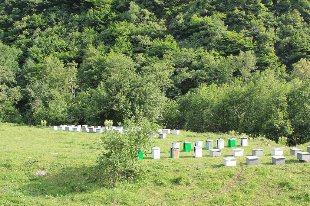 tourism-in-chechnya-itum-kale-mertvyi-gorod-37